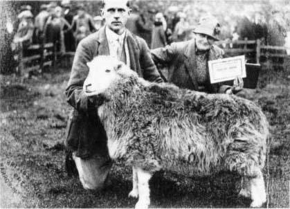 Беатрикс Поттер и Том Стори на выставке овец