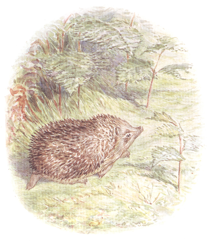 The_Tale_of_Mrs. Tiggy-Winkle