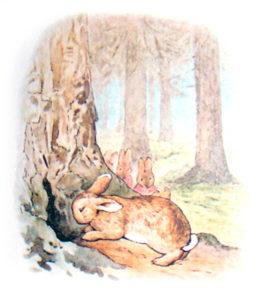 Кролик Питер Беатрикс Поттер