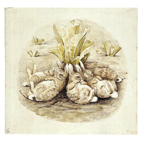 Крольчата Флопси
